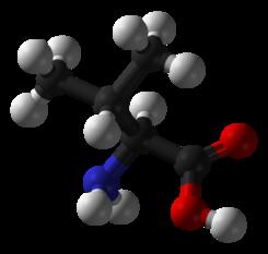Aminoácido l-valina